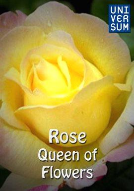 Rose - Queen of Flowers /