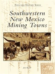 Southwestern new mexico mining towns cover image