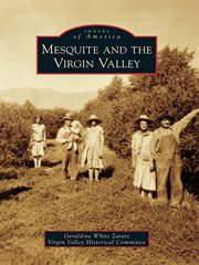 Mesquite and the virgin valley cover image