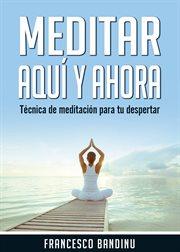 Meditar aqu̕ y ahora. tčnica de meditaci̤n para tu despertar