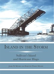 Island in the storm cover image