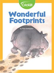 Wonderful footprints cover image