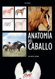 Anatoma̕ del caballo