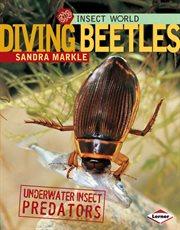 Diving Beetles