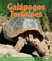 Galâapagos Tortoises