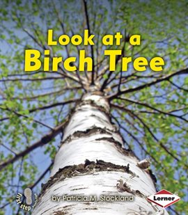 Cover image for Look at a Birch Tree