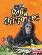 Meet A Baby Chimpanzee