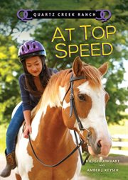 At top speed cover image