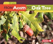 From acorn to oak tree cover image