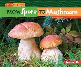 From Spore To Mushroom