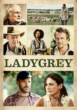Cover image for Ladygrey
