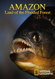 Amazon: Land of the Flooded Forest /