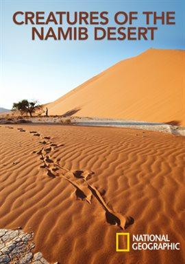 Creatures of the Namib Desert
