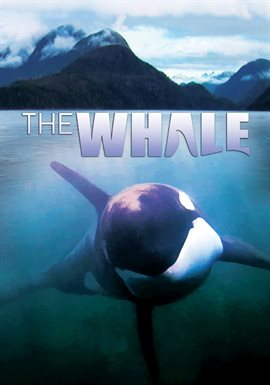 Cover image for The Whale