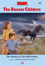 Mystery of the Wild Ponies
