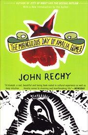 The miraculous day of Amalia Gómez : a novel cover image