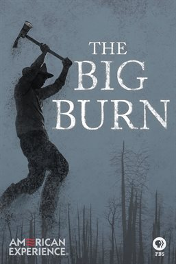 Cover image for The American Experience: The Big Burn