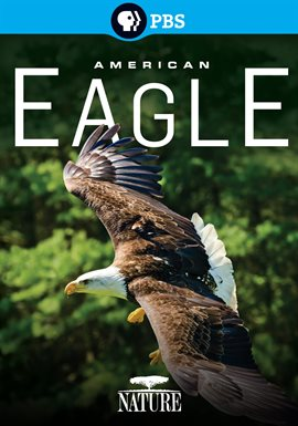 Cover image for American Eagle