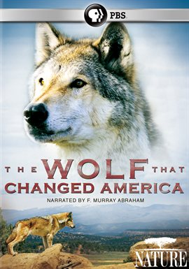 Cover image for The Wolf That Changed America
