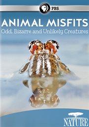 Animal Misfits
