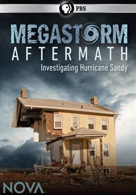 Cover image for Megastorm Aftermath