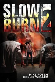Slow burn 2 cover image