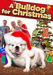 A bulldog for Christmas cover image