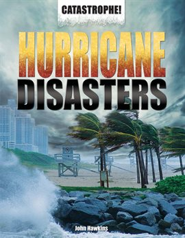 Cover image for Hurricane Disasters