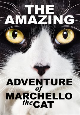 Cover image for The Amazing Adventure Of Marchello The Cat