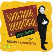 Bryn terfel - something wonderful cover image