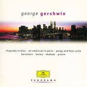 Gershwin - Set: Bernstein/ozawa/previn/levine