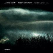 Robert schumann: geistervariationen cover image