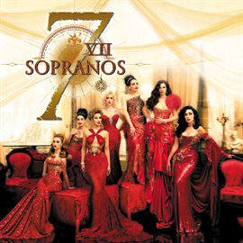 Cover image for The 7 Sopranos