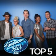 American Idol Top 5 Season 14 / Various Artists