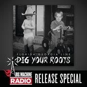 Dig your roots (big machine radio release special). Big Machine Radio Release Special cover image