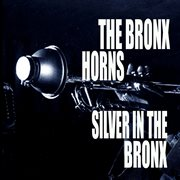 Silver in the Bronx cover image