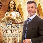 Ave maria - die schönsten marienlieder cover image