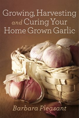 Growing, Harvesting, and Curing Your Home Grown Garlic