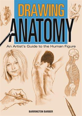 Ebook victor drawing perard and anatomy