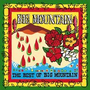 The best of big mountain cover image