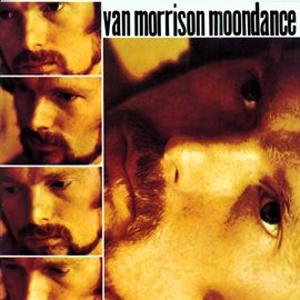 Moondance by Van Morrison, book cover
