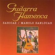Guitarra flamenca cover image