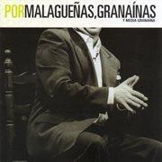Flamencopassion. por malagueąs, grana̕nas y media grana̕na cover image