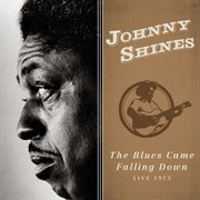 The blues came falling down: live 1973. Live 1973 cover image