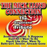 The Sugarland Tribute