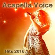 Acapella Voice Hits 2016.1