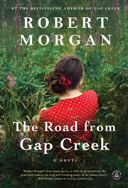 The road from Gap Creek: a novel cover image